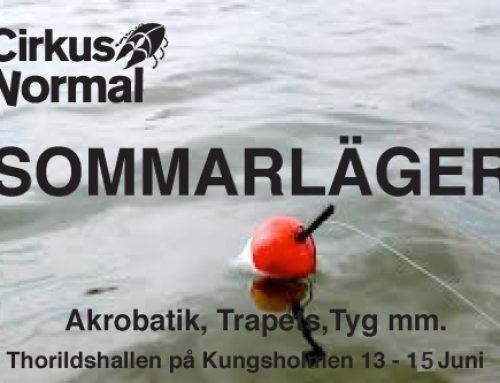 Sommarläger 13-15 Juni 2019